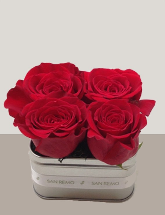 4 Red Roses In-A-Tin