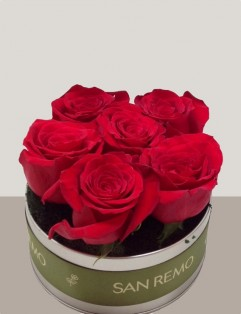 6 Red Roses In-A-Tin