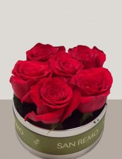 6 ROSES ROUGES Boîte En Étain